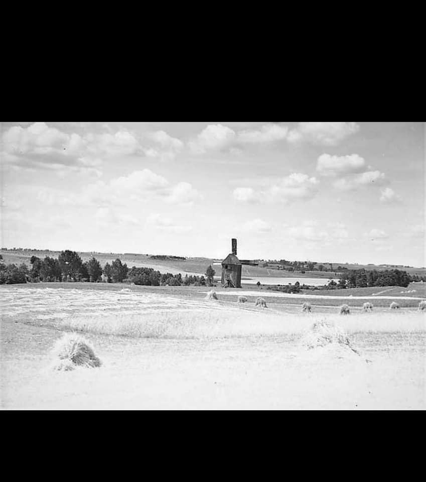 Wiatrak w Rogowie nad jeziorem z 1932
